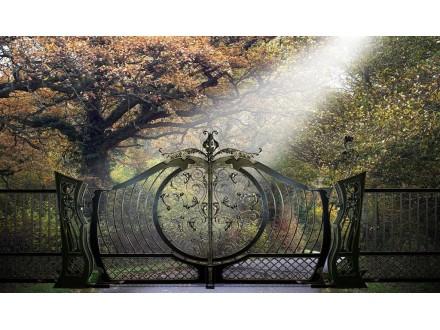 Ворота кованые Хортиця